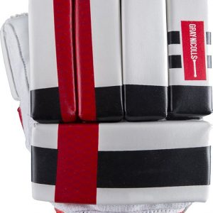 Gray Nicolls Predator3 Academy Cricket Batting Gloves